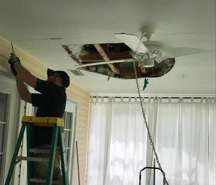 Mold Remediation The And Removal Procedures