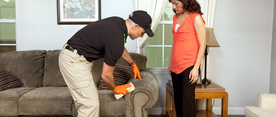 North Naples, FL carpet upholstery cleaning